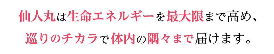 仙人丸は生命エネルギーを最大限まで高め、巡りのチカラで体内の隅々まで届けます。