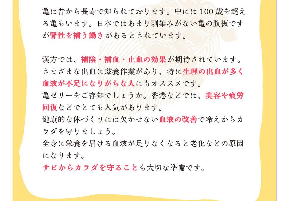 日本ではあまり馴染みの無い亀の腹板。腎性を補う働きがあるとされています。